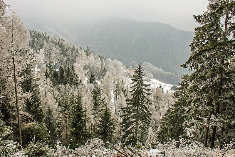 Winter wonderland mountain scenery with centuries-old spruce and pine in the austrian Alps. Mountain landscape of Semmering. royalty free stock photography
