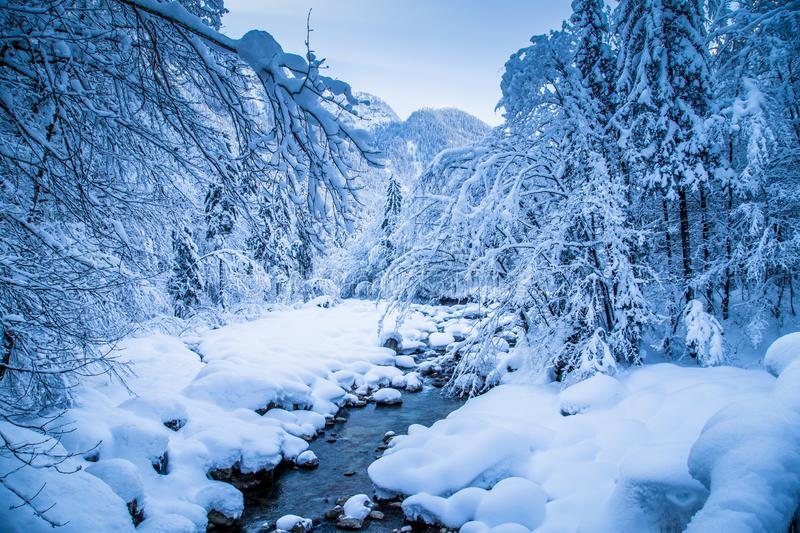 Winter wonderland with river bed and trees covered in deep snow. Scenic view of romantic winter wonderland with river bed and trees covered in deep snow on a stock photography