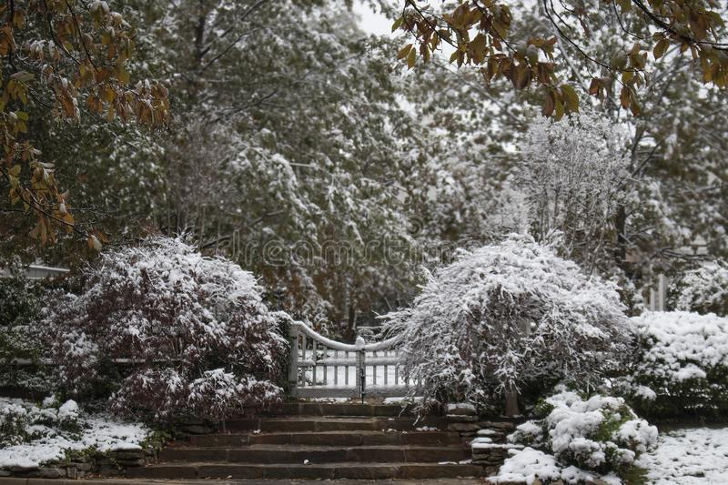 Winter wonderland - Steps and gate leading to an estate and surrounding bushes and trees covered with a wet heavy snow - selective. Focus stock image