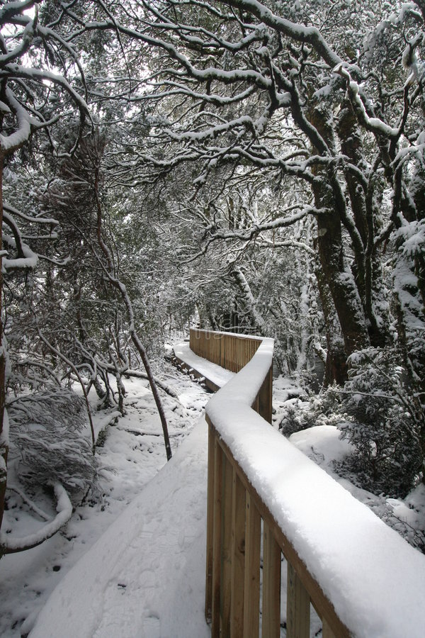 Download Winter Wonderland Walkway Stock Photo - Image: 1455880
