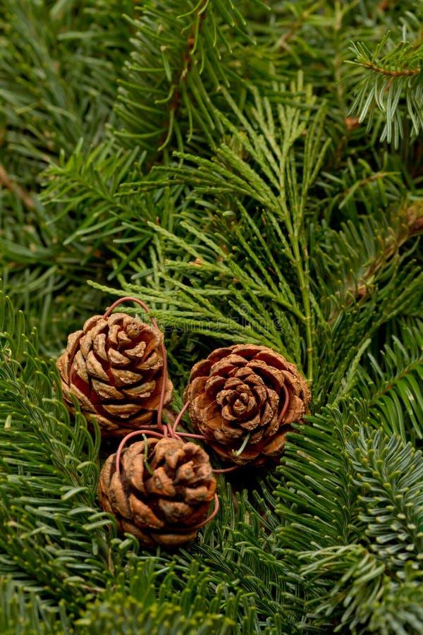 Winter wreath background