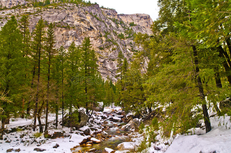 Download Winter In Yosemite Royalty Free Stock Photo - Image: 24811035