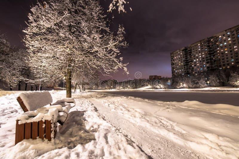Winterabendpark lizenzfreie stockfotos