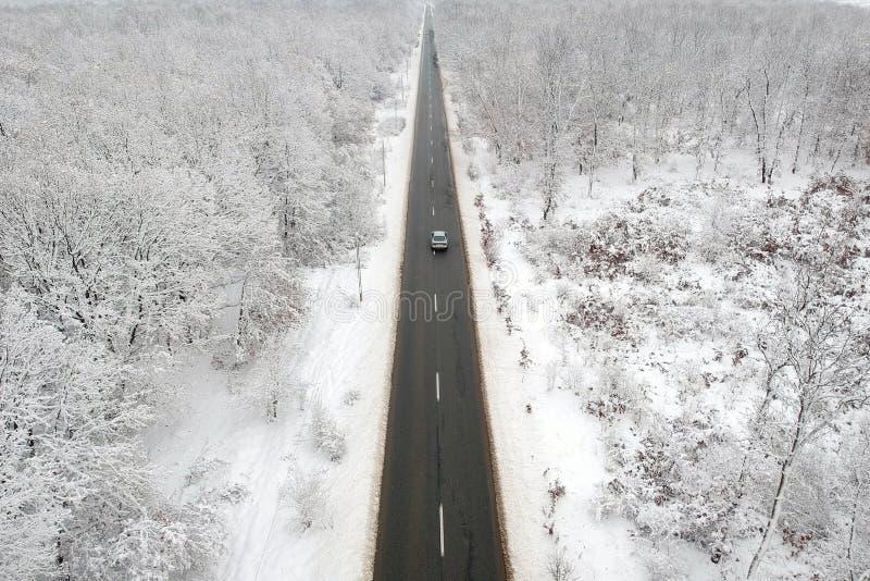 Winteransicht einer Straße mitten in dem Wald lizenzfreie stockfotos