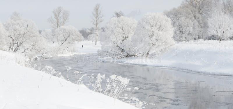 Winterbäume nahe einem Fluss, der mit Hoar am Morgen bedeckt wurde, beleuchteten mit stockfoto