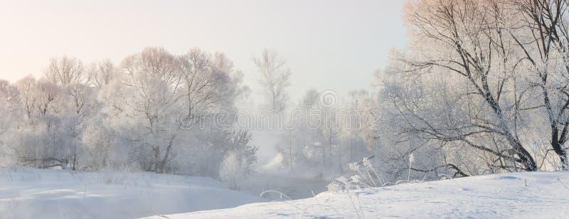 Winterbäume nahe einem Fluss, der mit Hoar am Morgen bedeckt wurde, beleuchteten mit stockbilder