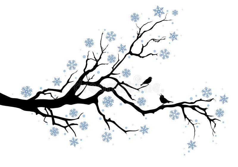 Winterbaumzweig lizenzfreie abbildung
