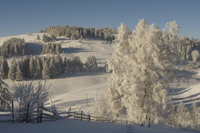 Winterberglandschaft stockfotografie