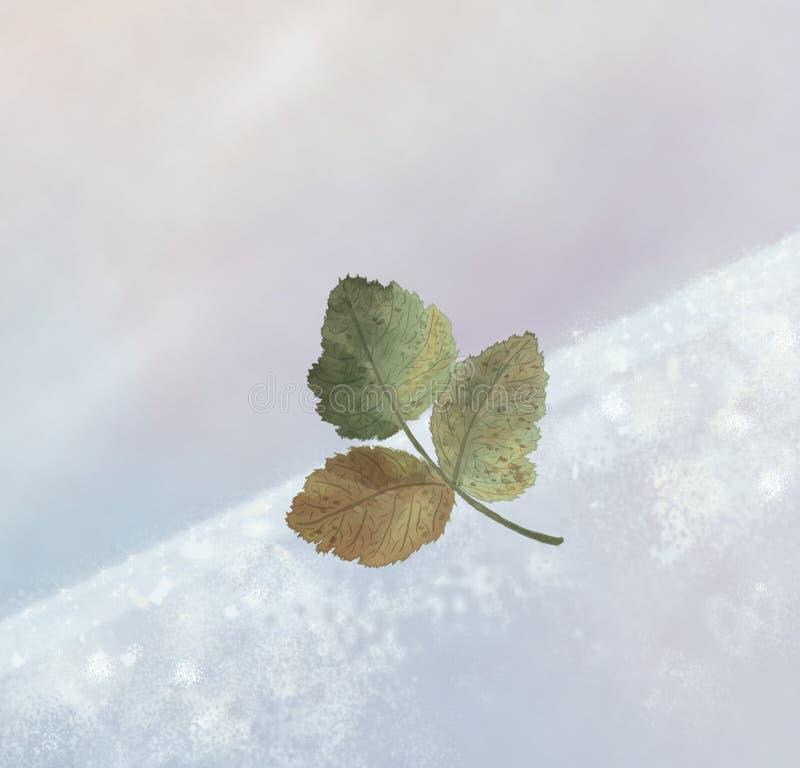 Winterblatt Stockbilder