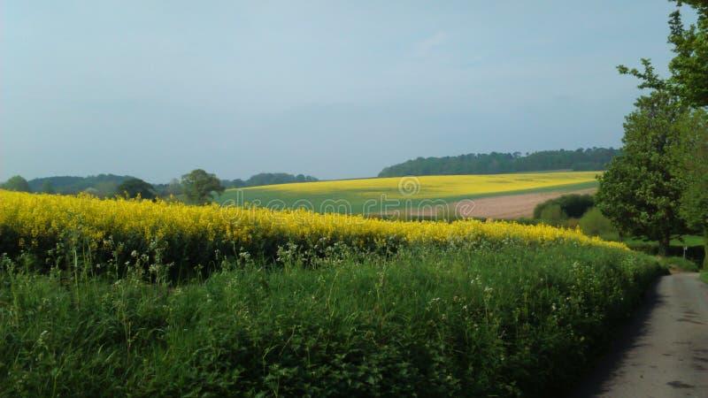 Winterborne farm royalty free stock images