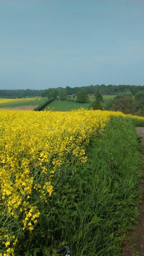 Winterborne farm stock photos