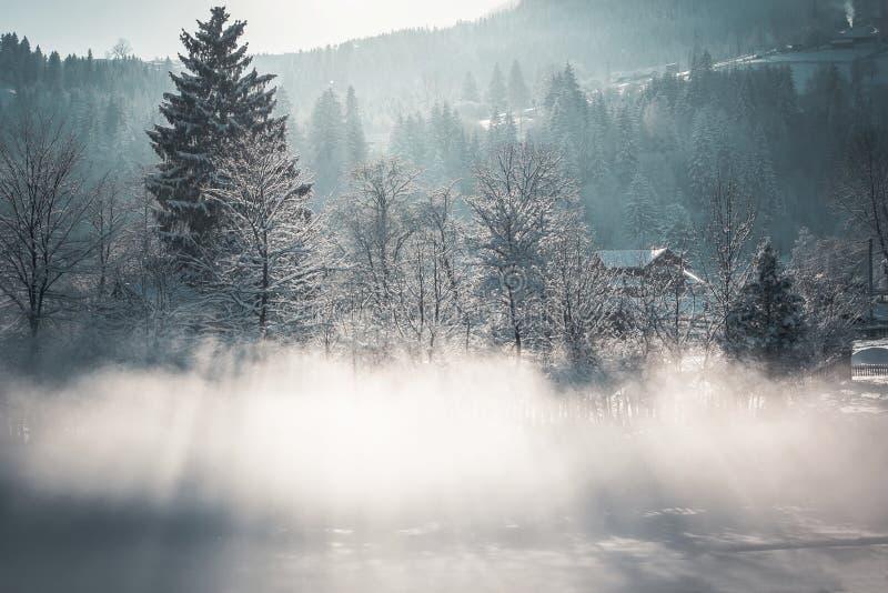 Wintercollage lizenzfreies stockfoto