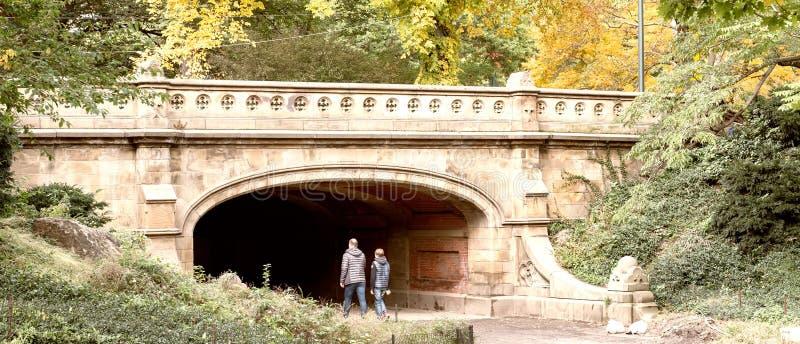 Winterdale bro i Central Park under lövverksäsongen, nya Yor fotografering för bildbyråer