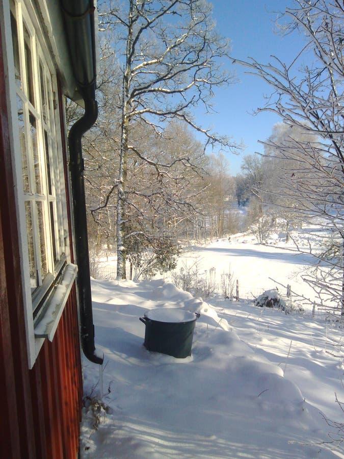 Winterday photos stock