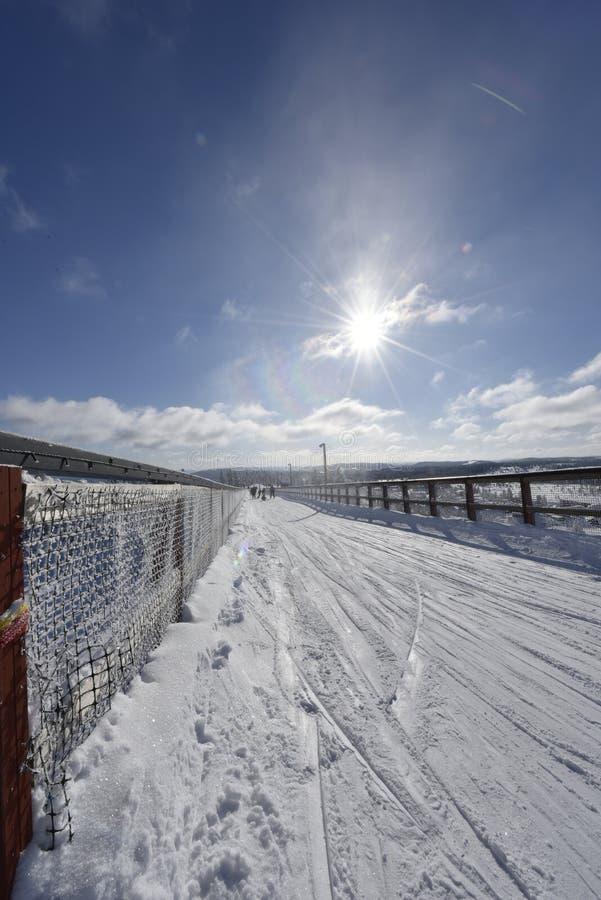 Winterday nevado na Suécia de Branäs imagem de stock