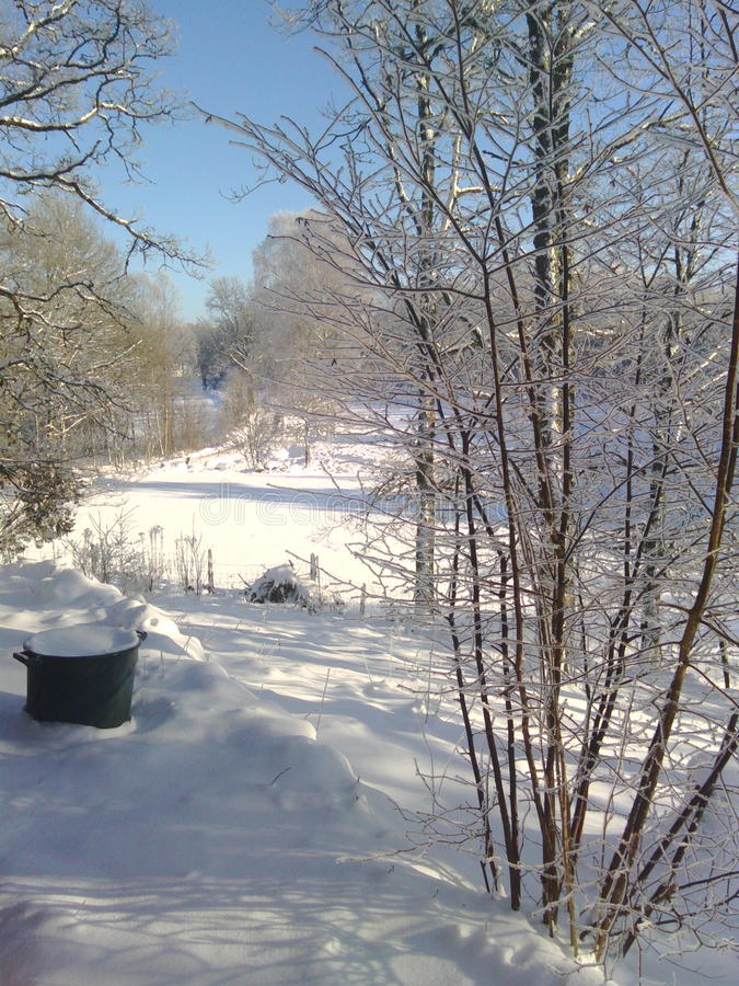 Winterday royalty free stock images