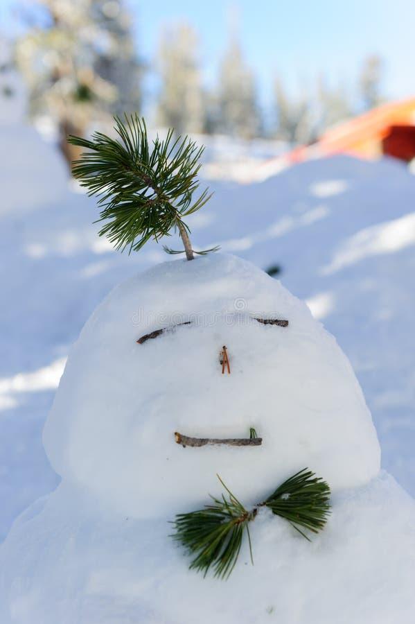 Wintereingetragenes warenzeichen/schneebedeckter Tag des Schneemannes/des Winters auf Tahoe See Kalifornien, USA lizenzfreie stockfotografie
