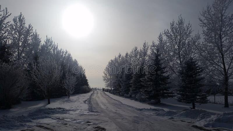 Winterfahrstraße lizenzfreies stockfoto