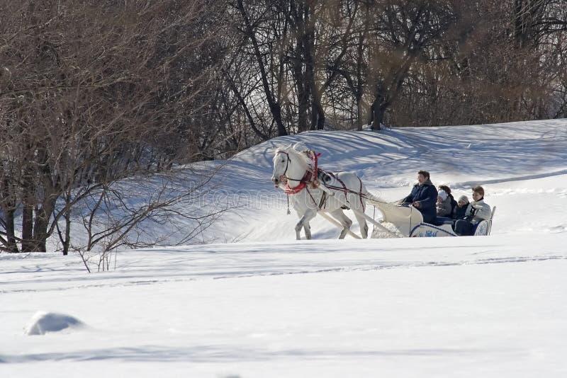 Winterfeiertag stockfoto