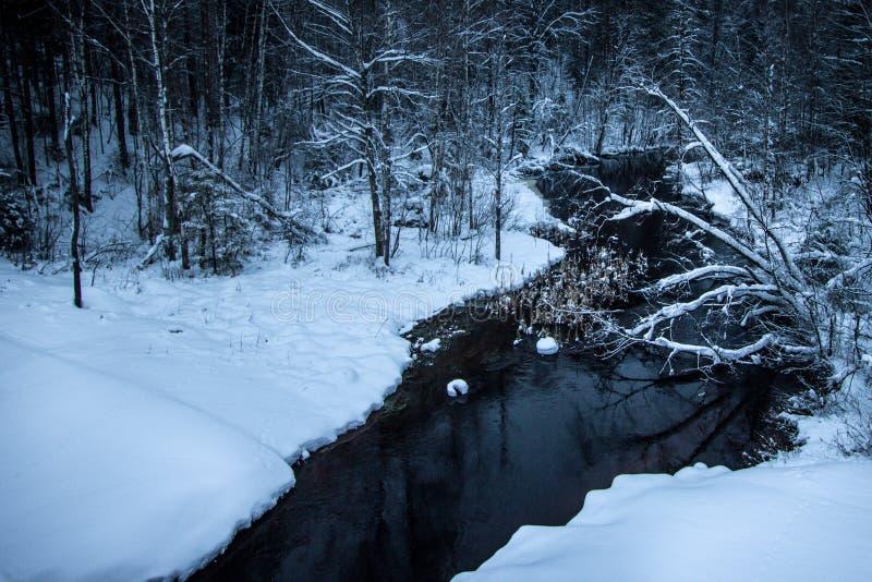 Winterfluß mit dunklen Wasser fließt die schneeweißen Banken von Bäumen und von Sträuchen durch Fluss in der Wintersaison stockfoto