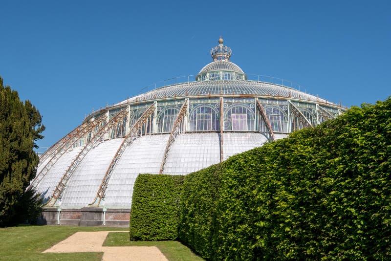 Wintergardenen med kronan ?verst, del av de kungliga v?xthusen p? Laeken, Bryssel, Belgien fotografering för bildbyråer