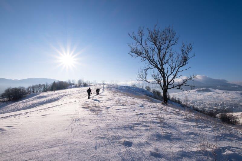 Wintergebirgshügel lizenzfreies stockfoto