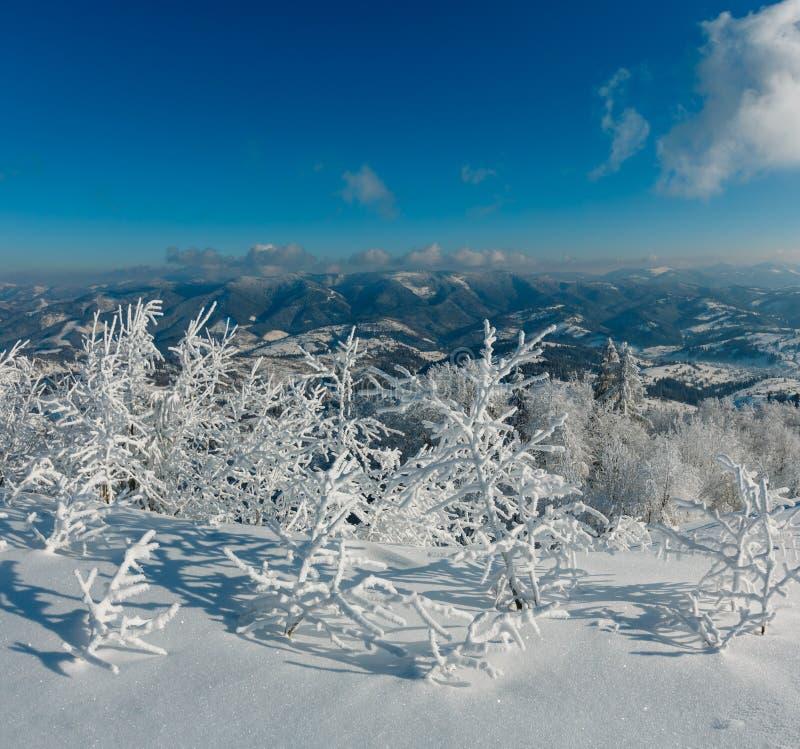 Wintergebirgsschneebedeckte Landschaft stockfotografie