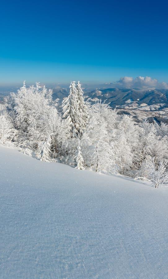 Wintergebirgsschneebedeckte Landschaft stockfoto