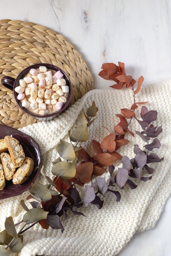 Wintergetränkebene gelegt - heiße Schokolade mit Eibischen, Plätzchen, farbige Eukalyptus brances auf Stroh placemat, gestricktes stockfotografie