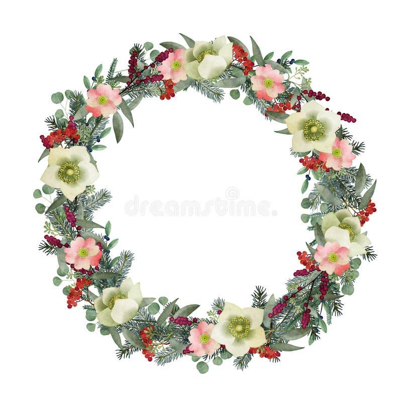 Wintergrußkarte, Einladung Aquarell-Weihnachtskranz Tanne, Eukalyptusniederlassungen, wilde Rosen, Helleboresblumen lizenzfreie abbildung