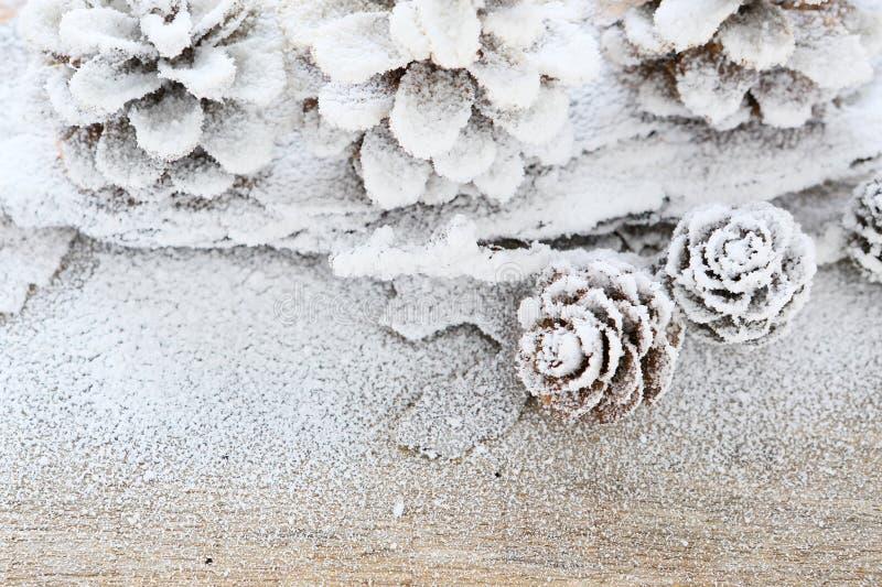 Winterhintergrund mit Kiefernkegeln, Dekor stockfotografie