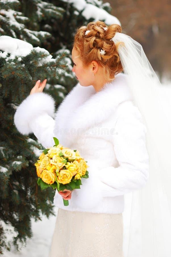 Winterhochzeit stockbilder