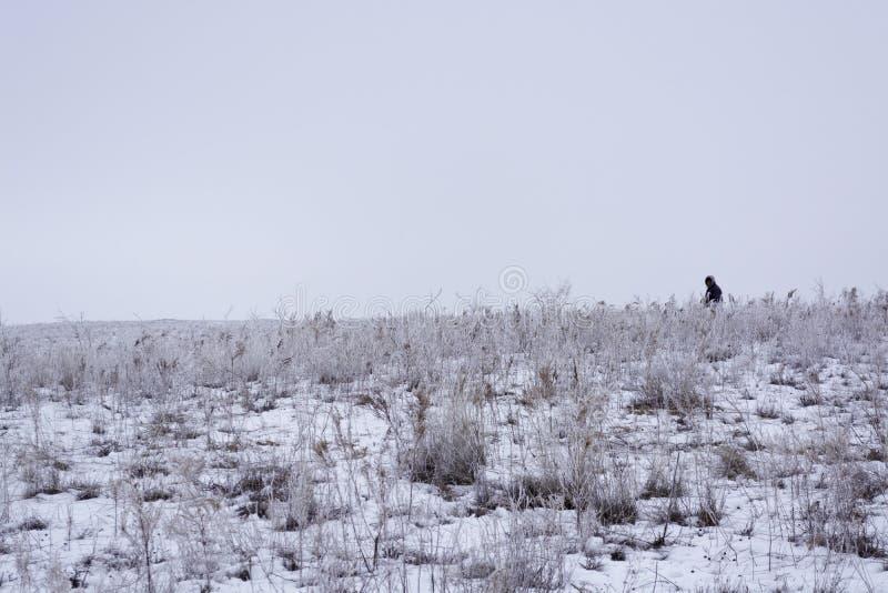 Wintering.Minimalism. Monochrome gray sky. Shepherd with a flock. Nomadic household Kazakhstan. royalty free stock photos