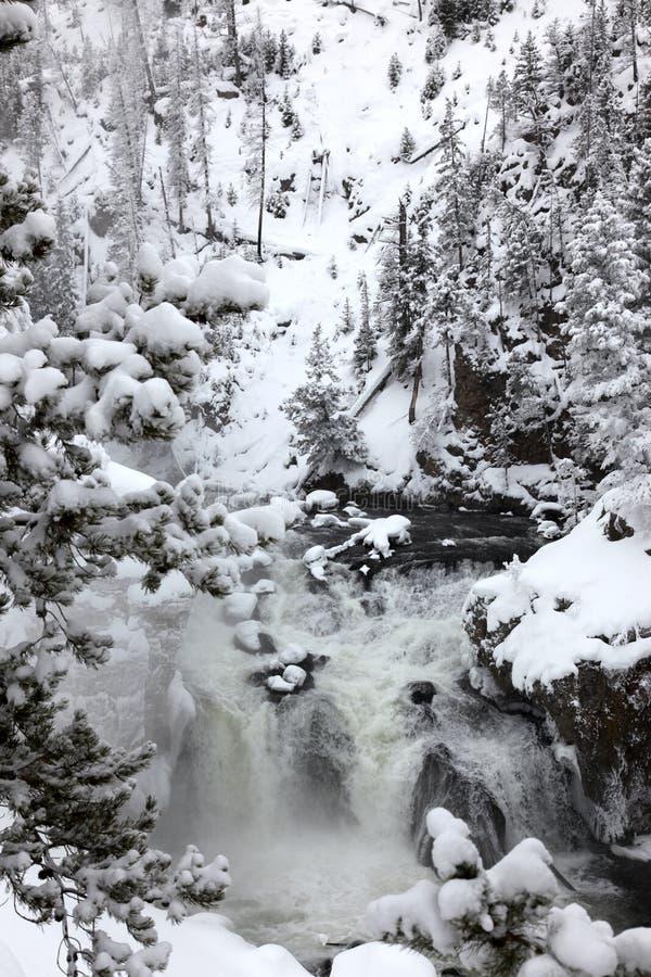 Winterjahreszeit an den Fällen stockfoto
