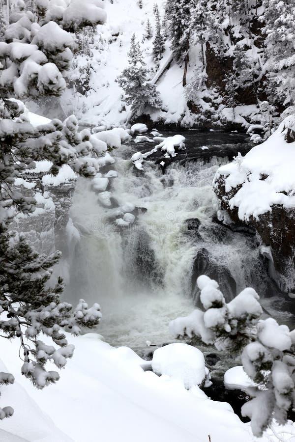 Winterjahreszeit an den Fällen lizenzfreies stockfoto