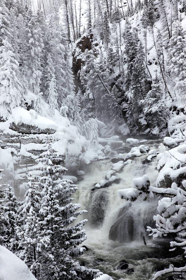 Winterjahreszeit an den Fällen von Yellowstone NP lizenzfreie stockfotografie