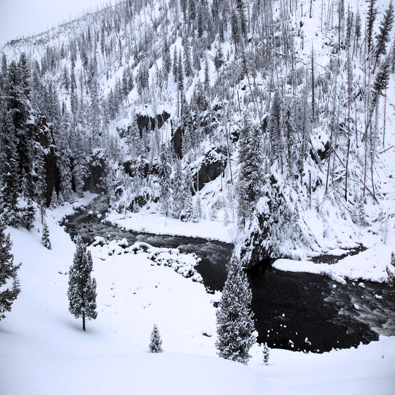 Winterjahreszeit in Nationalpark stockfotografie