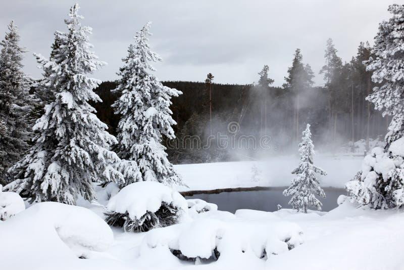 Winterjahreszeit in See von Nationalpark lizenzfreies stockbild
