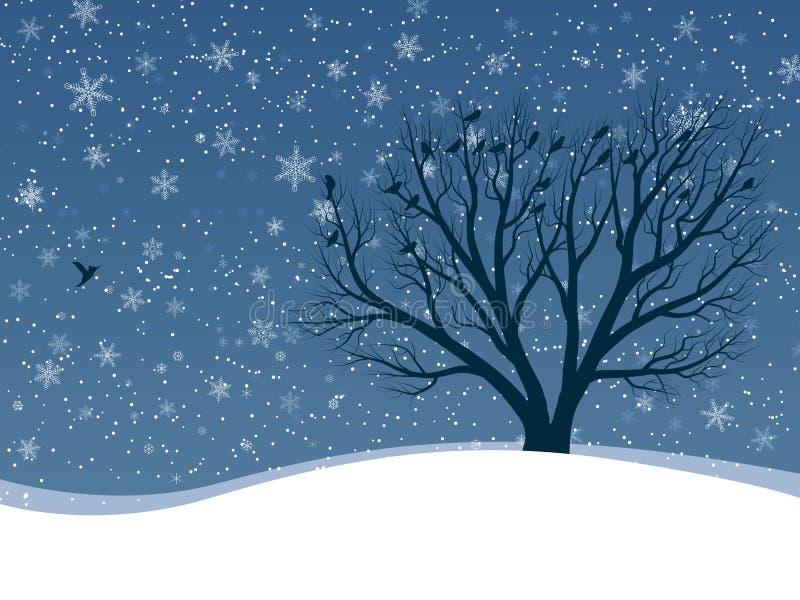 Winterkarte von Schneefällen mit Bäumen. lizenzfreie abbildung