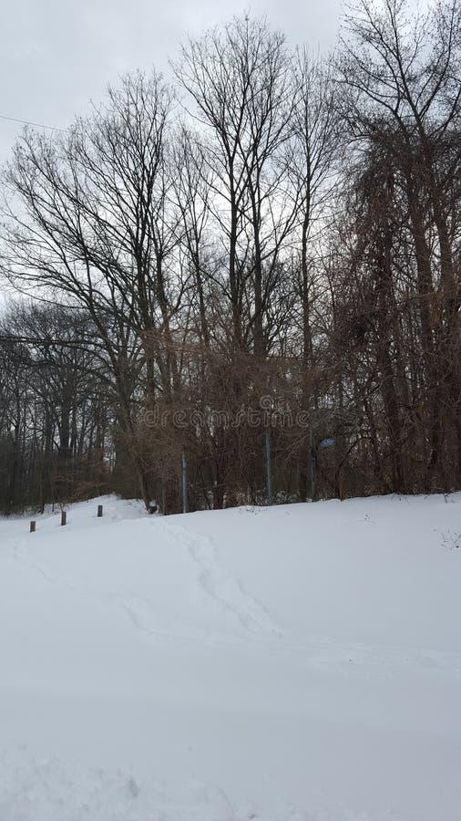 Winterland fotografia stock libera da diritti