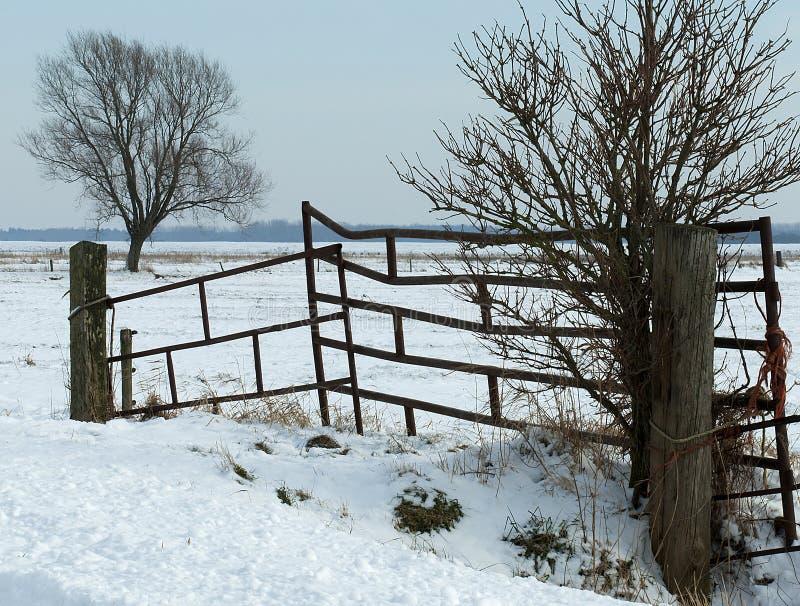 Winterlandscape stock images