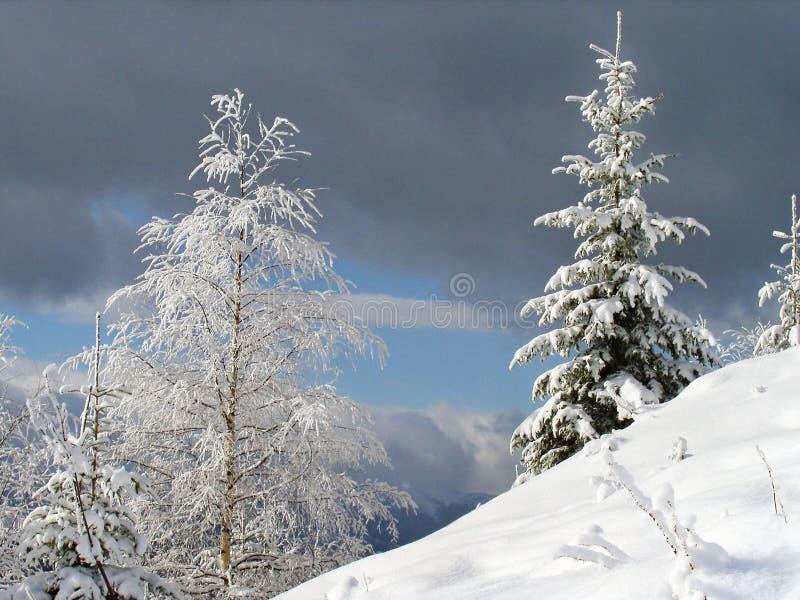Winterlandschaft 1 lizenzfreie stockbilder