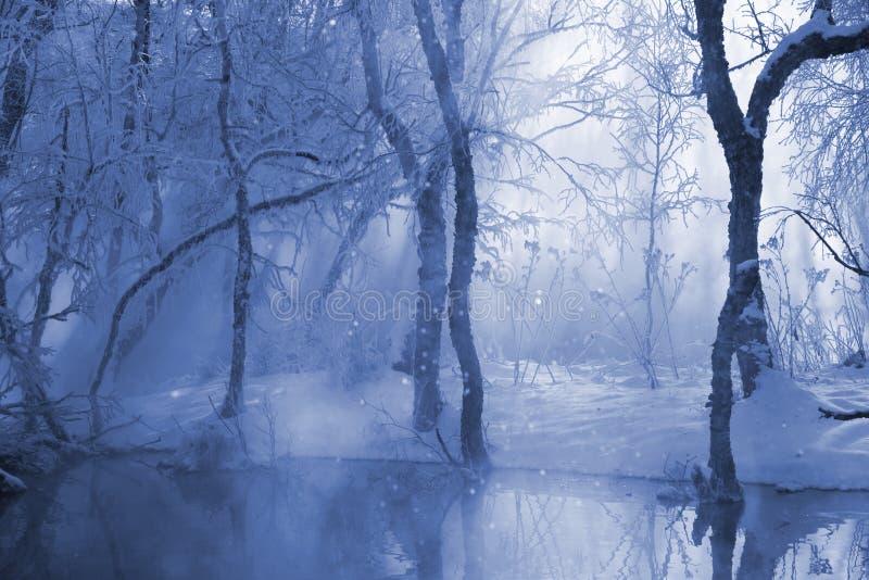 Download Winterlandschaft stockbild. Bild von tranquil, rauhreif - 12201809