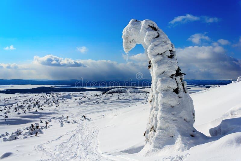 Download Winterlandschaft stockfoto. Bild von feiertag, sonne - 26363232