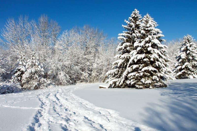 Winterlandschaft stockfotos