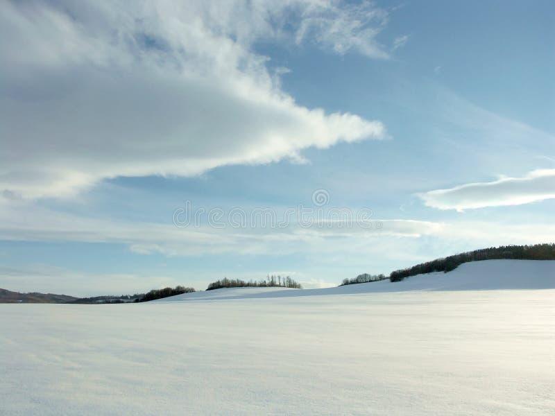 Winterlandschaft in den Bergen lizenzfreies stockfoto
