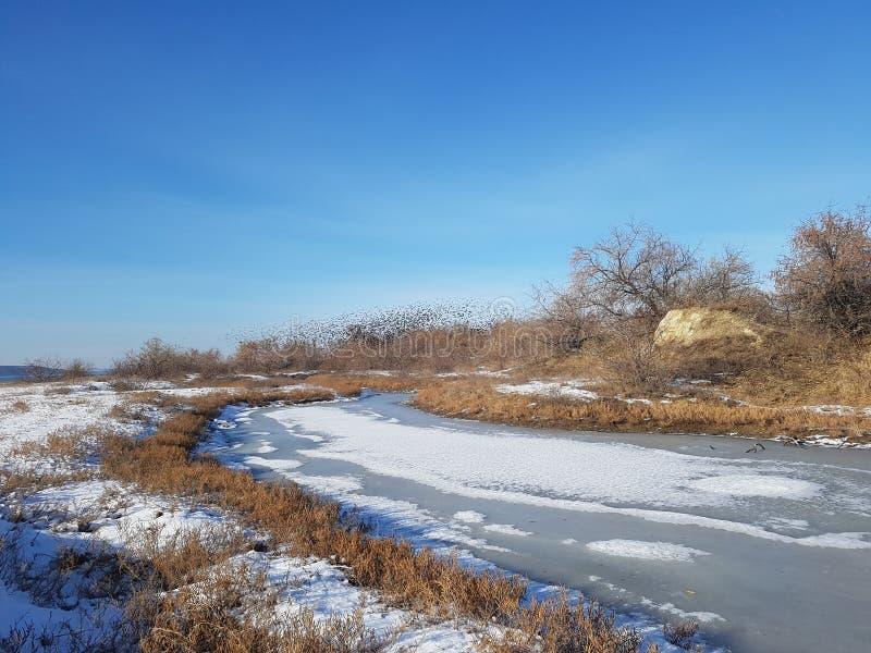 Winterlandschaft des Tages stockfotos