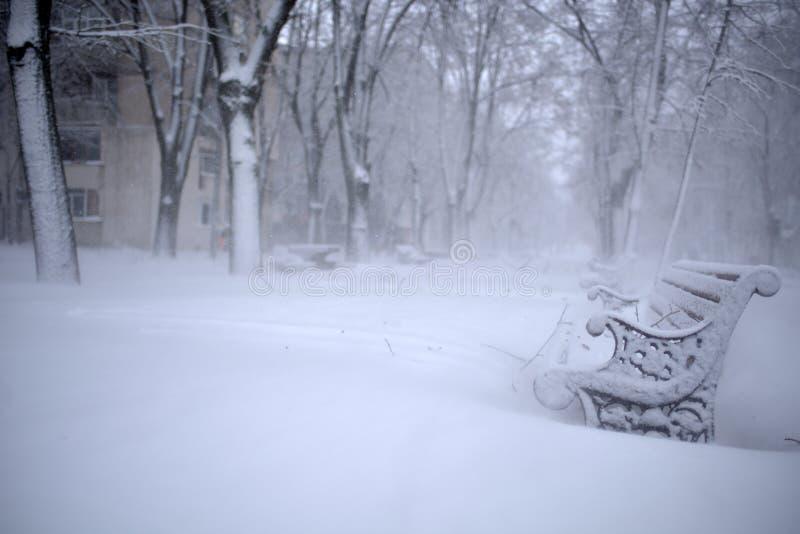 Winterlandschaft im Park lizenzfreie stockfotografie