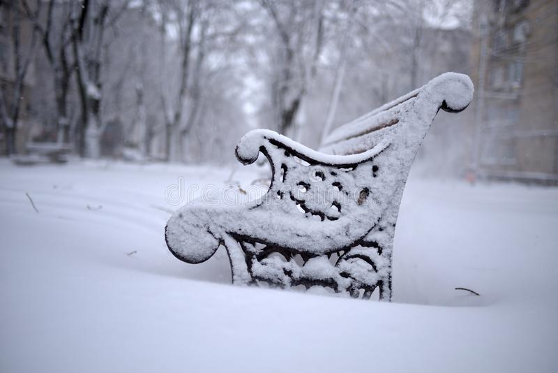 Winterlandschaft im Park lizenzfreie stockbilder