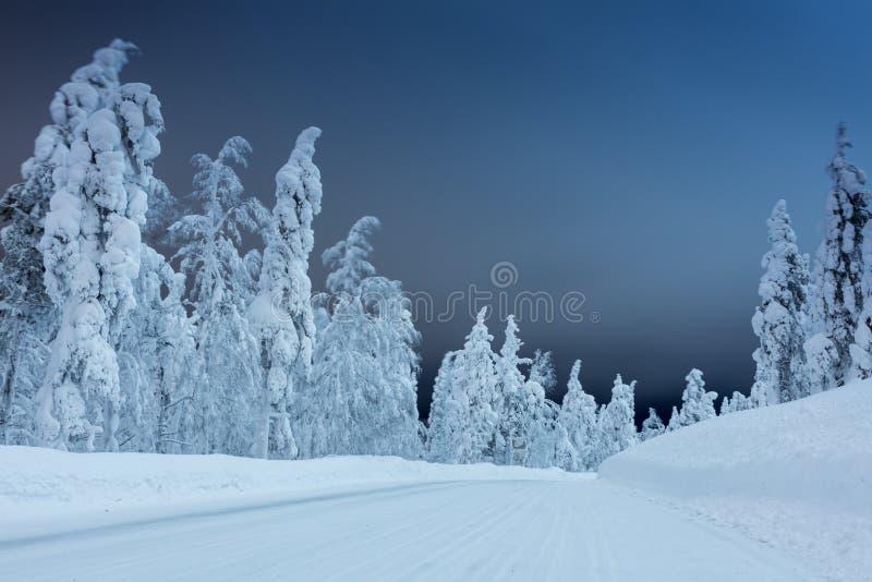 Winterlandschaft - Landstraße nachts mit großen Bäumen bedeckte Sn stockbilder